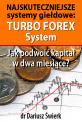 Najskuteczniejsze systemy giełdowe: Turbo Forex System